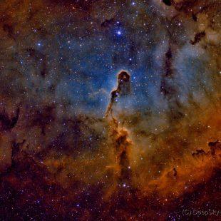 Elephant_2015-11-20_HOS_16+14+18x1800sec_v2 (Elephant's Trunk Nebula – IC1396)