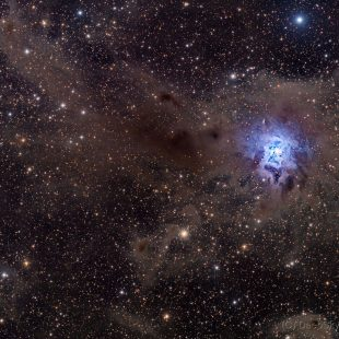 Iris_2015-09-14_LDRGB_37+16+17+15x900sec_v2 (Iris Nebula – NGC7023)