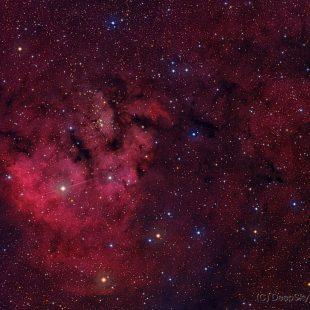 NGC7822_2015-11-14_LRGB_16+21+21+16x900sec_v3 (NGC7822)