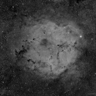 Elephant_H_15x600sec_v3 (IC1396 – Emission Nebula in Cepheus – Mono)