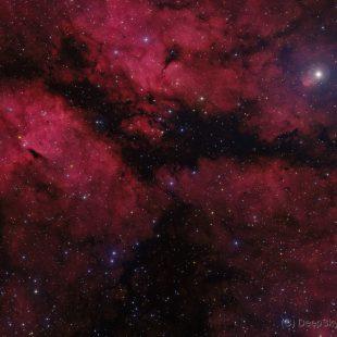 IC1318_2016-05-14_HRGB_10x1800sec+15+18+17x600sec_v1 (IC1318 – Sadr Again)