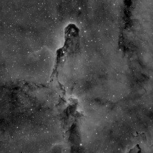trunk_2016-12-04_h_46x600sec_v1 (Elephant's Trunk Nebula)