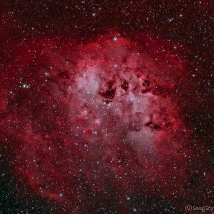 sh2-236_2017-01-07_ho_3224x600sec_v1 (Tadpole Nebula – Sh2-236)