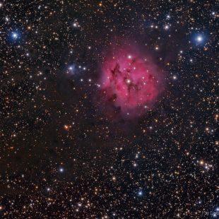 Cocoon_RH305_2017-09-16_LRGB_63+22+13+18x600sec_v1 (Cocoon Nebula)